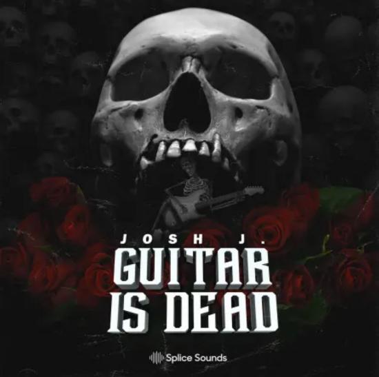 Josh J Guitar is Dead