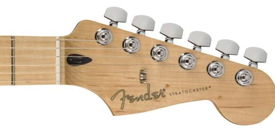 Tone Woods | Parts of an Electric Guitar