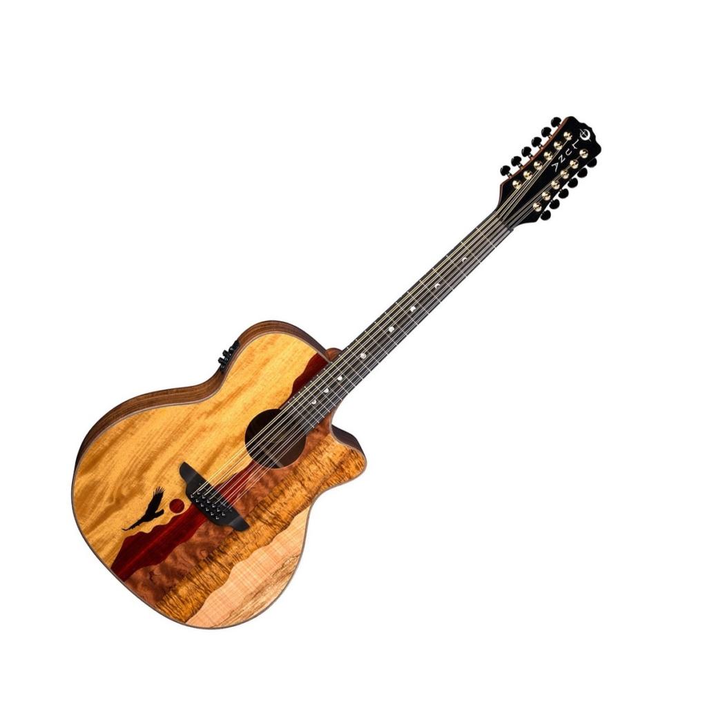 12 String vs 6 String Guitar